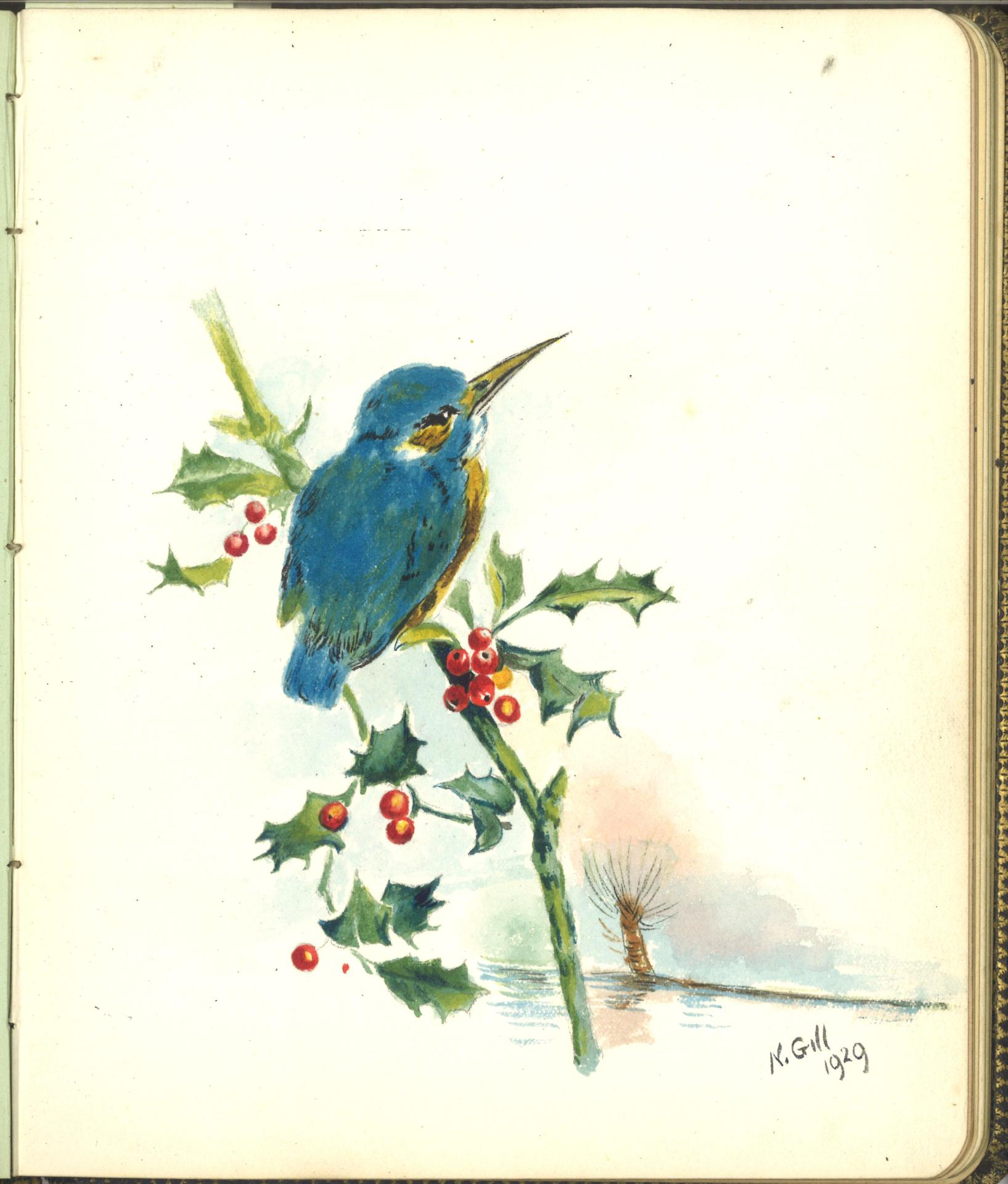An image of a sketch of kingfisher