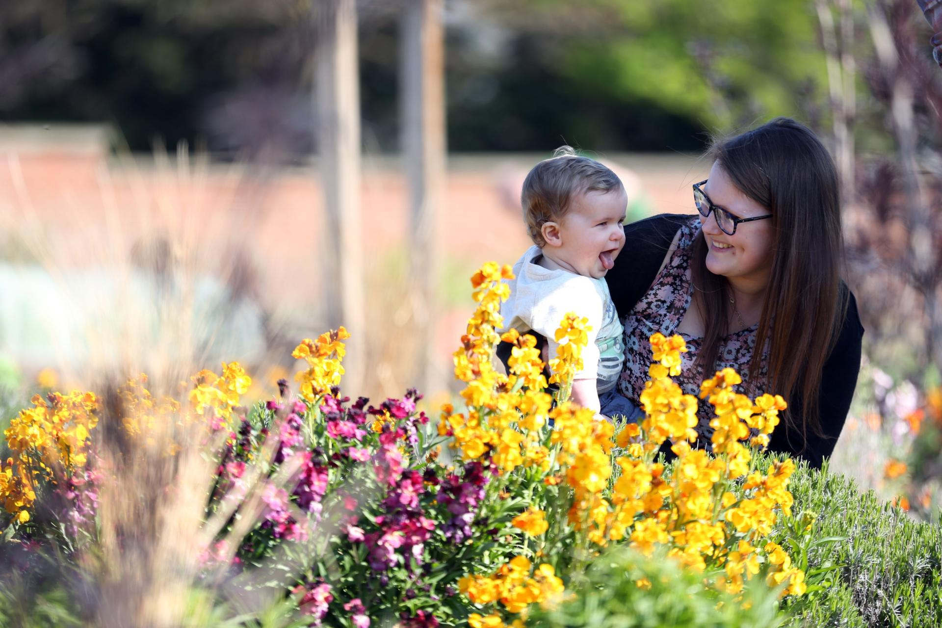 Family in the walled garden