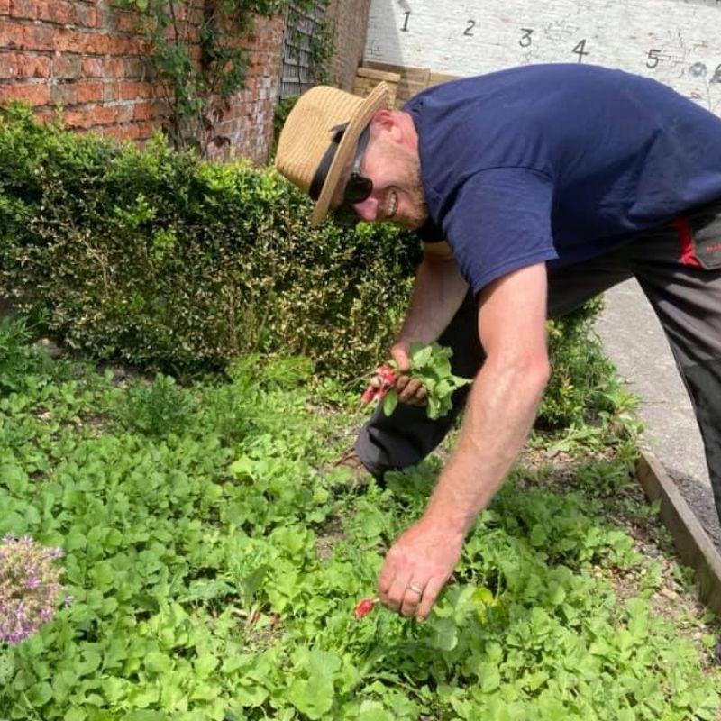 Preston Park Volunteers And Gardeners Hard At Work In The Salad Beds Weeding