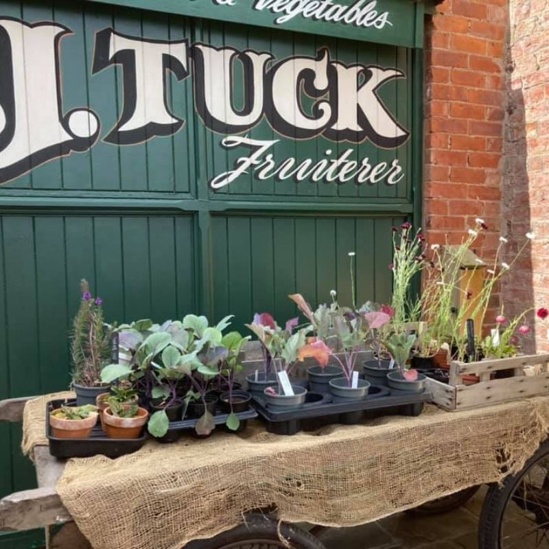 Seasonal Produce For Sale From The Walled Garden At Preston Park Museum